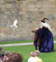 Our spectacular shows have included broomsticks, magical illusions and real owls!