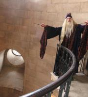 John Lambert provides a lookalike performance of Professor Dumbledore, Headmaster of Hogwarts School of Witchcraft and Wizardry. He's even been at official Harry Potter events!